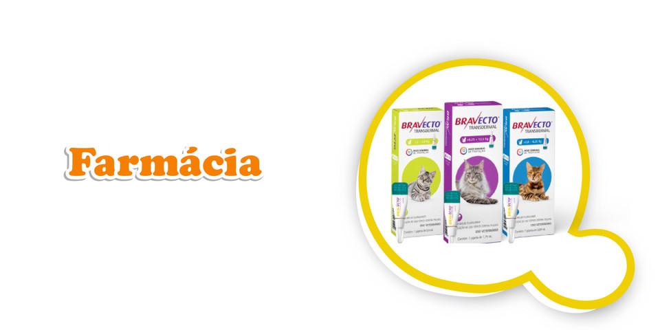 qfofura-gato-farmacia-01.jpg