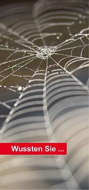 stillstand-web.jpg