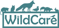 wildcare logo.png