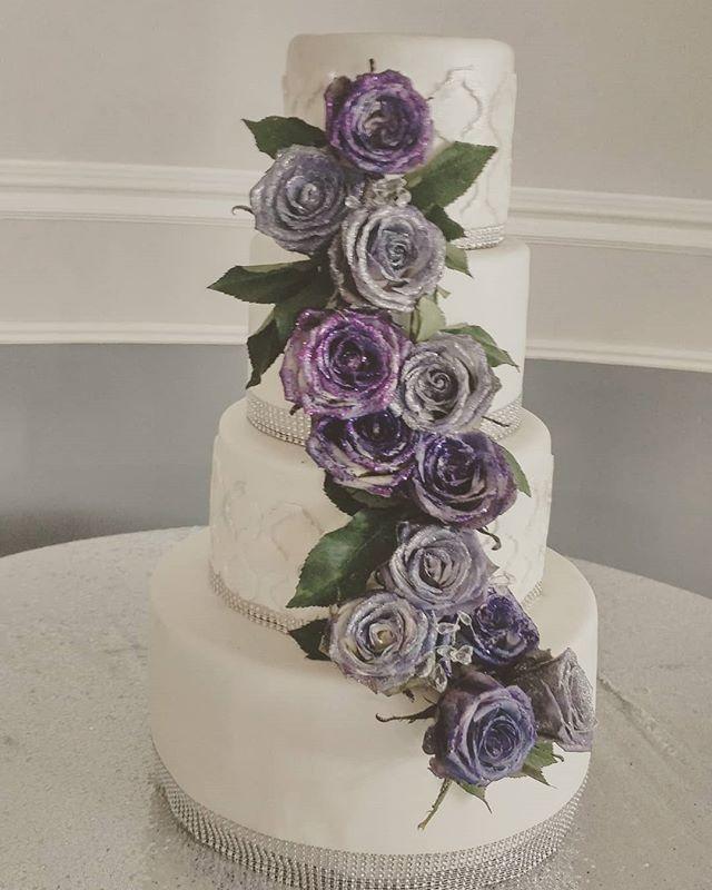 Ain't these roses  beautiful__Purple han