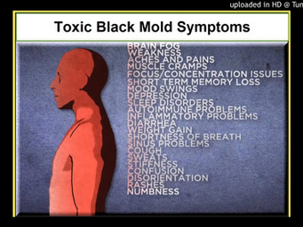 Mold Exposure and Symptoms