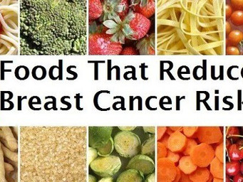 Breast Cancer Diet Connection