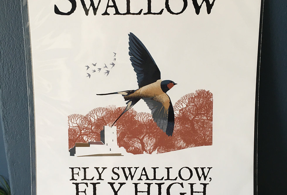 Birds of Ireland Series - The Swallow