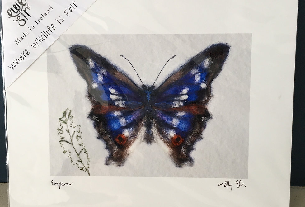 Butterfly print signed by artist-Molly Ellis