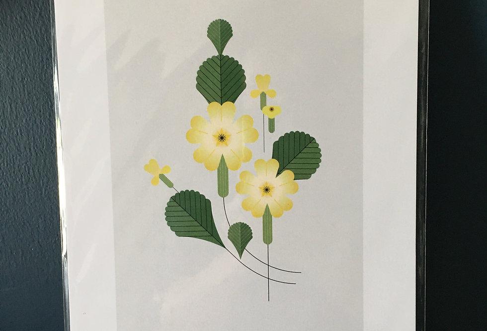 Primrose contemporary art print- Sally Caulwell