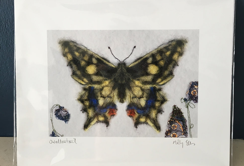 Butterfly Print signed by artist -Molly Ellis