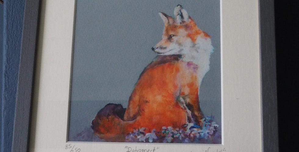 Irish Wildlife Limited Edition Signed Artist Print-Retrospect
