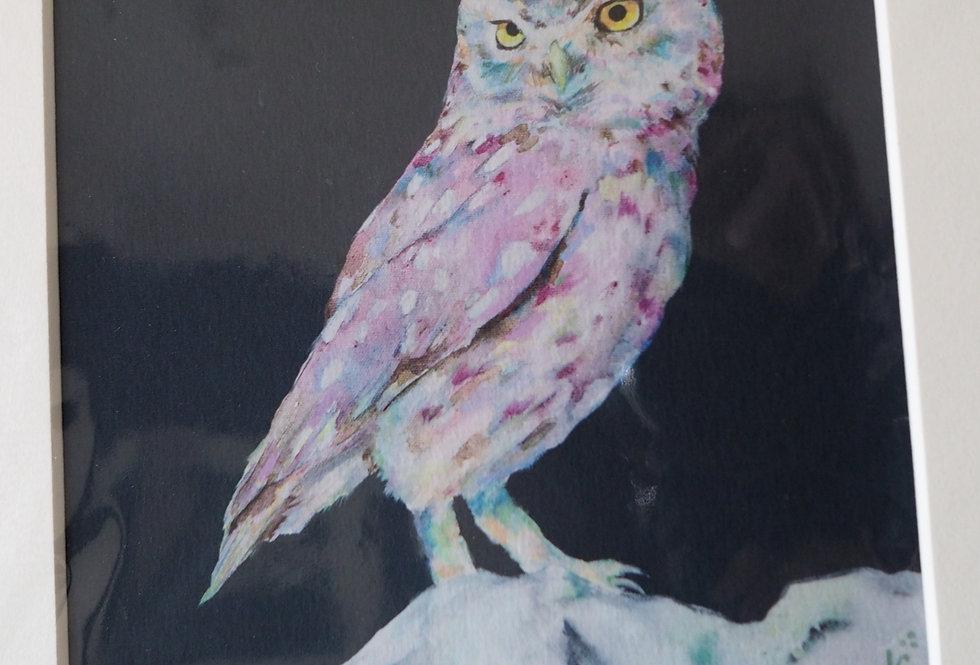 Living on the Edge- Irish Wildlife Print Lorraine Fletcher