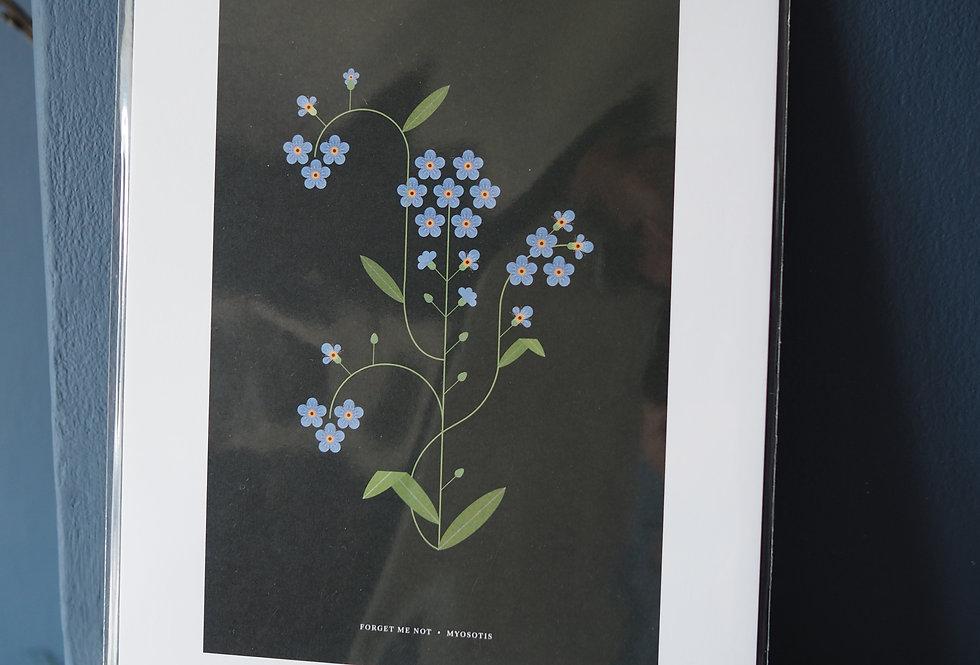 Botanical Contemporary Art Print A4 - Sally Caulwell