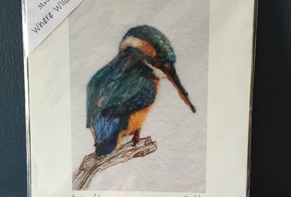 Kingfisher giclee art print- Molly Ellis