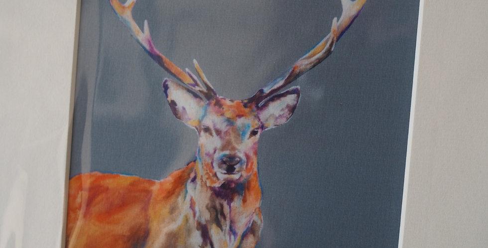 Stag Night - Irish Artist Print- Lorraine Fletcher
