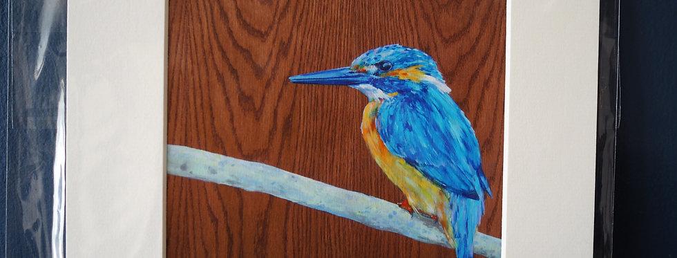 Tranquility- Kingfisher Irish Artist Limited Edition Print- Lorraine Fletcher