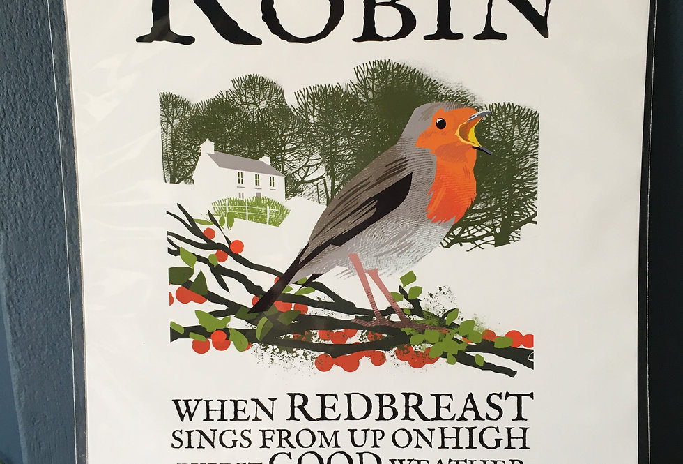 Birds of Ireland Series - The Robin.