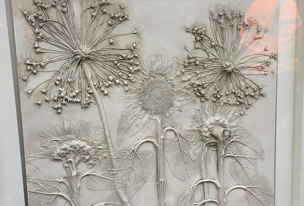 Fireworks- Botanical Artwork- Erica Devine