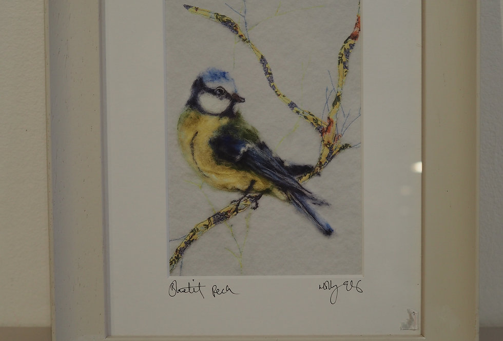 Bluetit Framed and Signed Art Print