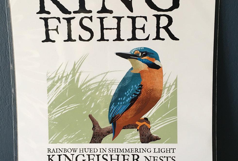 Birds of Ireland Series - King Fisher