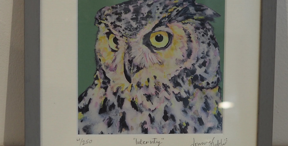 Irish Wildlife Limited Edition Signed Artist Print-Intensity