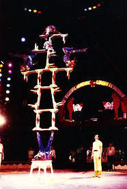 Acrobats of China Show Branson MO