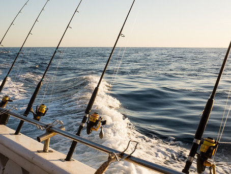 Top Things You Should Know about Fishing Charters