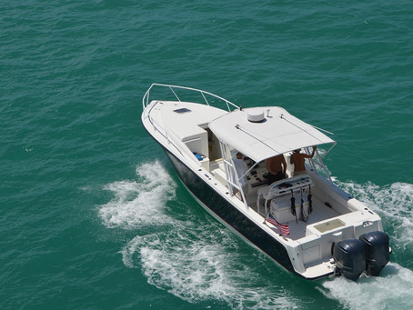 Guide to Inshore and Nearshore Fishing Charters in the Gulf