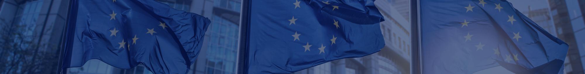EU banner.png