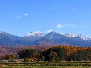 紅葉が里山までおりてきました