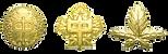 諏訪清陵高校校章Gold.png