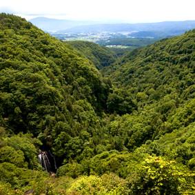夏の横谷渓谷を横谷観音展望台から眺める