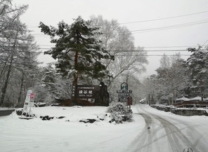 12/30 積雪。冬用タイヤでお越しください。