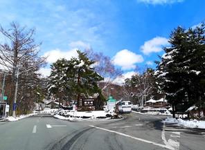 4月の雪! ご安心下さい。1日で溶けました。
