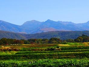 山里も秋っぽくなってきました