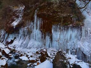 冬の横谷峡名物『氷瀑』、見頃です