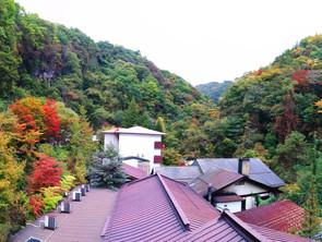 横谷峡に紅葉シーズン到来!