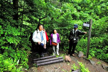 乙女滝への石段