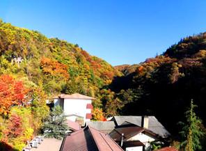 横谷峡の紅葉、今週末が見頃 !?