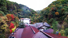 横谷渓谷の紅葉が始まりました