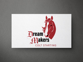 DreamMakers Colt Starting