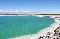 Laguna-Cejar.jpg