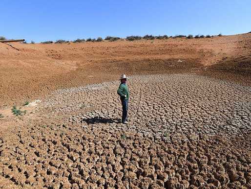 An Agri Plus Helps Drought-Busting Entrepreneurs