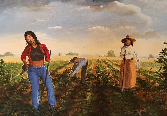 Talkn' Trashin the Cotton Patch - David Woods