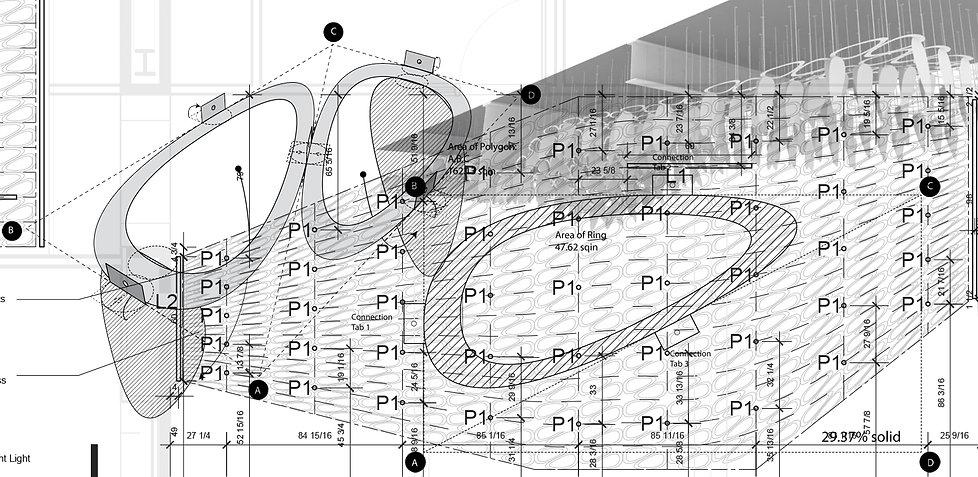 detail1axon.jpg