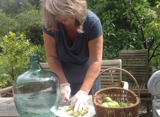 Heerlijke notenwijn uit eigen tuin