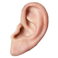 Tinnitus and How the Sound Helps You!!
