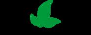 DMN Logo.png