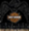 TDMC logo black on transparent.png