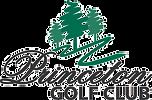 Princeton Logo 2010 colored_edited.png