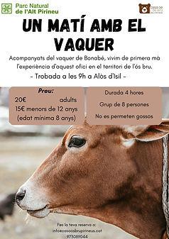 UN MATÍ AMB EL VAQUER.jpg