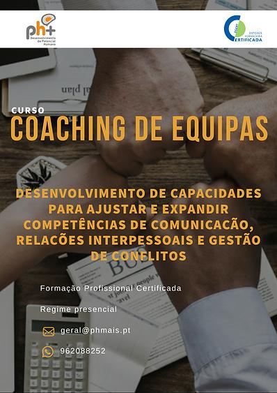 Coaching de equipas.png