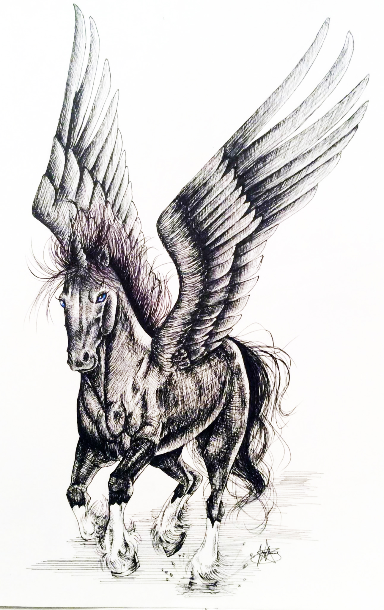 Ink portrait of a unicorn with wings