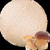 prestige_RusskieTRADICII_mushrooms.tif